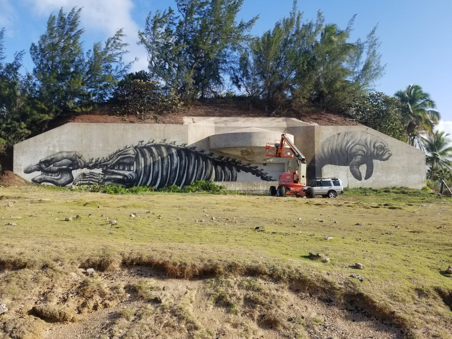 #PRLOVE and MANATEE by ROA